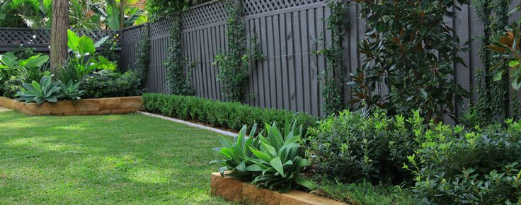 Grouped agaves in corners areas with small hedge to fill lengths of garden beds
