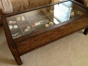 Exceptional DIY Glass Shadow Case Coffee Table