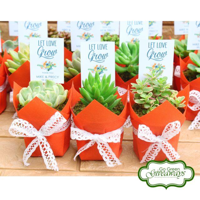 Succulents Wedding Favors Ecowraps Succulents With Lace