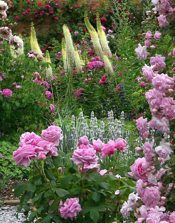 335 best English Country Garden images on Pinterest Flowers