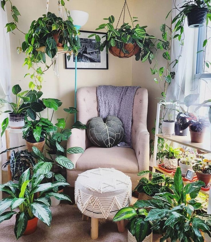 Home Living Room, Living Spaces, Low Maintenance Plants, Creature Comforts, Inspired Homes, Green Colors, Indoor Plants, Succulents, Home And Garden