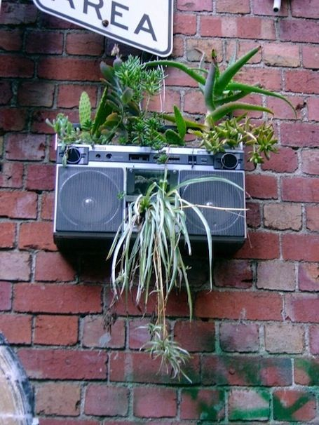 Boombox garden: A pretty good new use for a dead boombox, isn't it?!