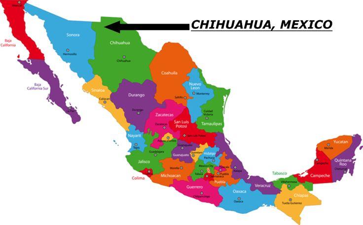 chihuahua map chihuahua dog history pinterest dog