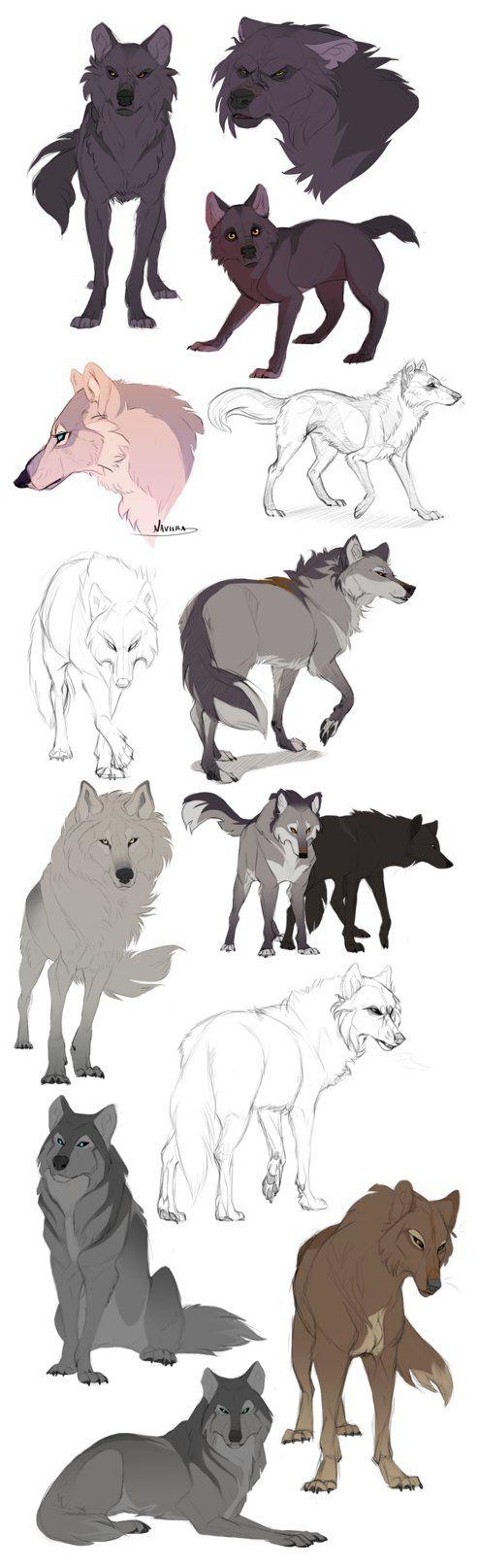 Wolf Sketchdump by Naviira