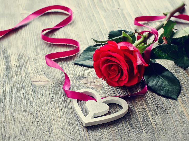 Czerwona, Róża, Serce, Wstążka