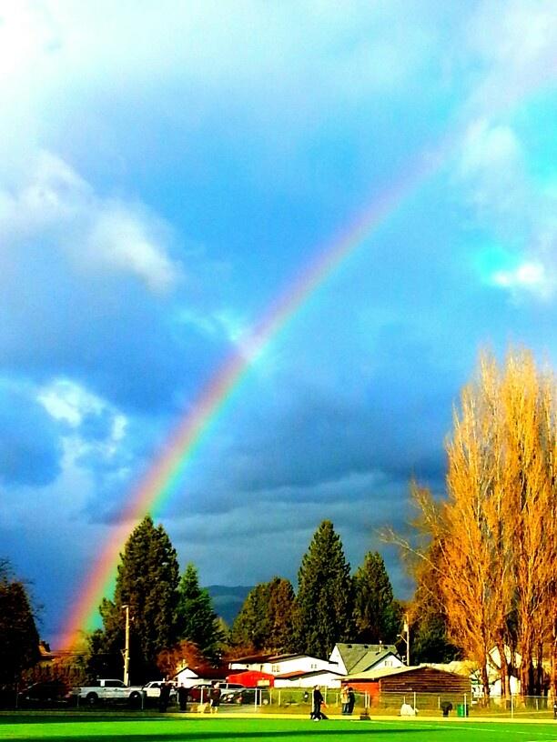 189 best Rainbow six siege images on Pinterest   Rainbow