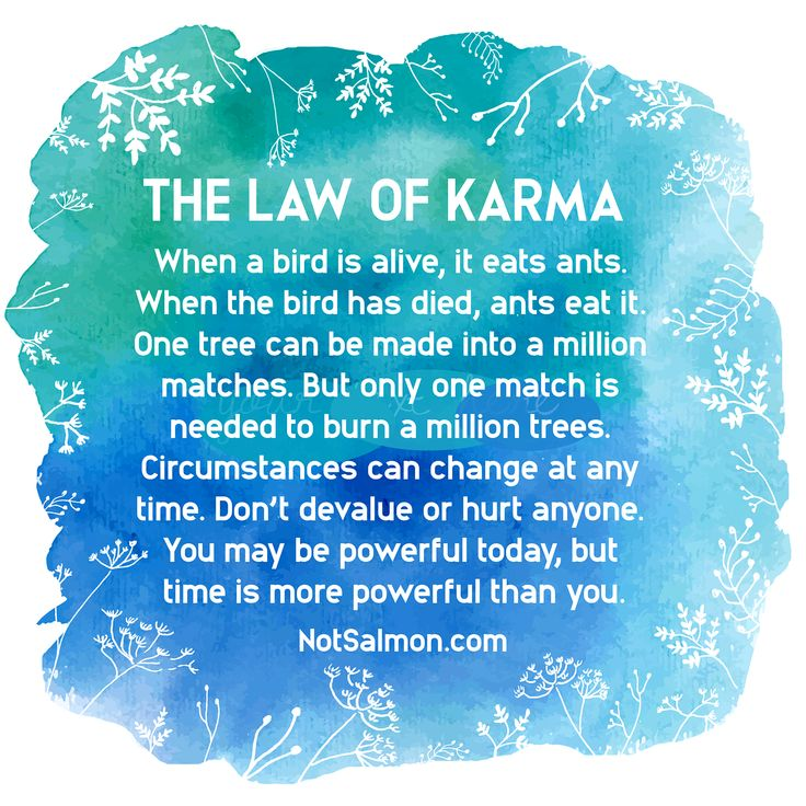 The Law of Karma – Mind & Body Trainer