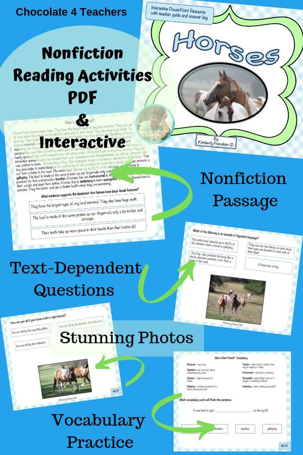 Horses: Nonfiction Reading Activities | Informational Text