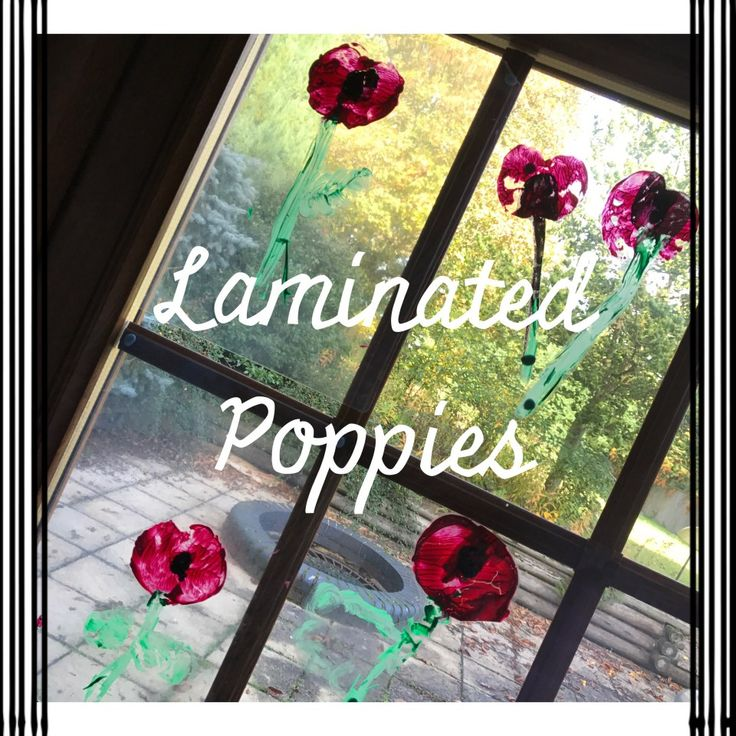 Laminated Poppy pictures for Remembrance Day | MontessoriSoul