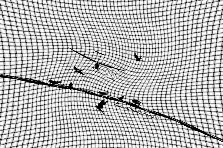 """— The flight of Icarus —   ...and yet his father, Daedalus, had warned him not to fly too close to the Sun; the """"Sun"""" that Icarus dared to look straight in the face.   (— Il volo di Icaro — Eppure suo padre, Dedalo, l'aveva avvertito di non volare troppo vicino al sole; quel """"sole"""" che Icaro pretendeva di guardare dritto in faccia)  ✔ https://marketplace.500px.com/alogico ✔ alogico@libero.it"""