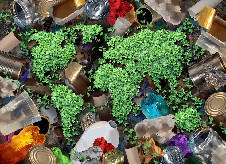 5 Promising Waste Management Case Studies