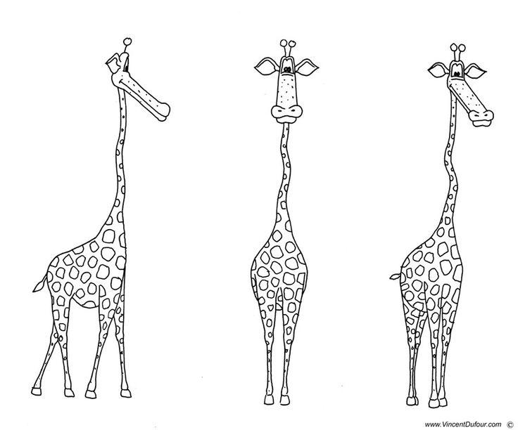 coloriage girafe tlcharger gratuitement au format a4 sur wwwvincentdufourcomfr