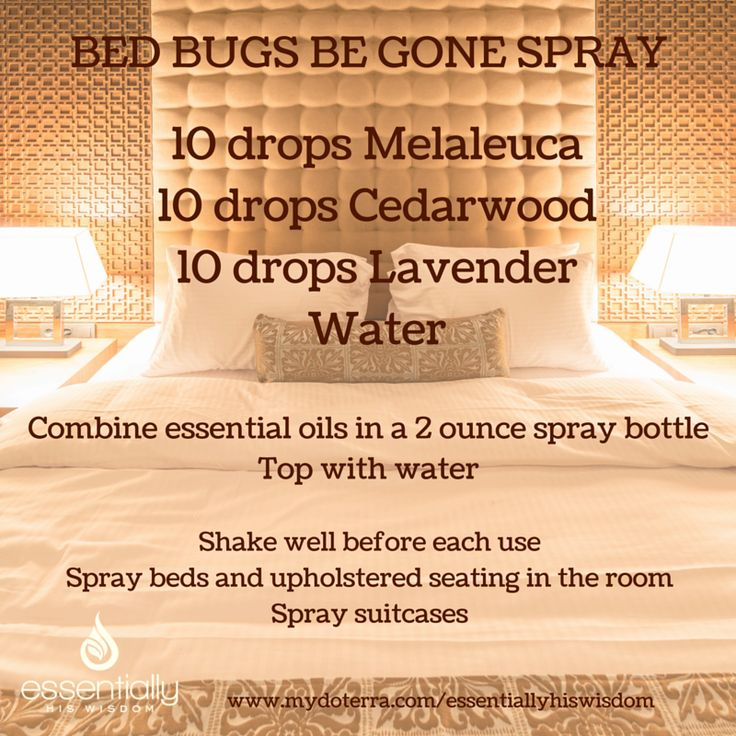 If your travels land you in a hotel this summer, keep this spray handy to deter…