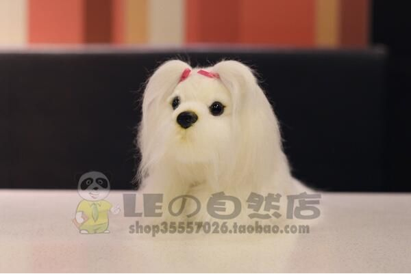 $15.33 (Buy here: https://alitems.com/g/1e8d114494ebda23ff8b16525dc3e8/?i=5&ulp=https%3A%2F%2Fwww.aliexpress.com%2Fitem%2FShih-Tzu-Doll-Plush-Toy-Doll-Simulation-Dog-Good-Quality-Stuffed-Animals-Children-S-Toys-White%2F32688386683.html ) Shih Tzu Doll  Plush Toy  Doll Simulation Dog  Good Quality  Stuffed Animals  Children'S Toys White Papillon for just $15.33