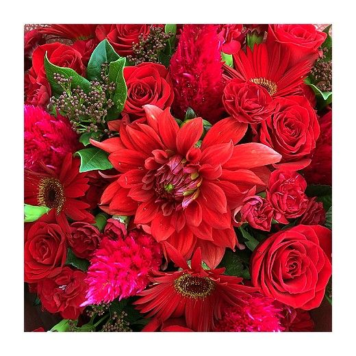Rich Red Bouquet - Auckland Delivery - Bestow Gifts + Flowers