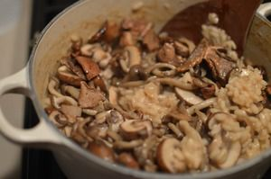 Wild Mushroom Risotto with Mixed Exotic Mushrooms & Dried Porcini