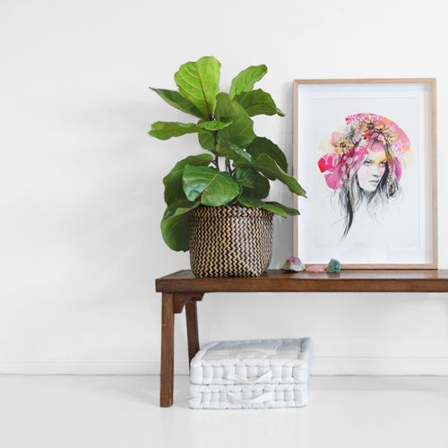 kelly smith x erin flannery - 'grandiflora' print collaboration..... FOR SALE NOW! #kellyxerin