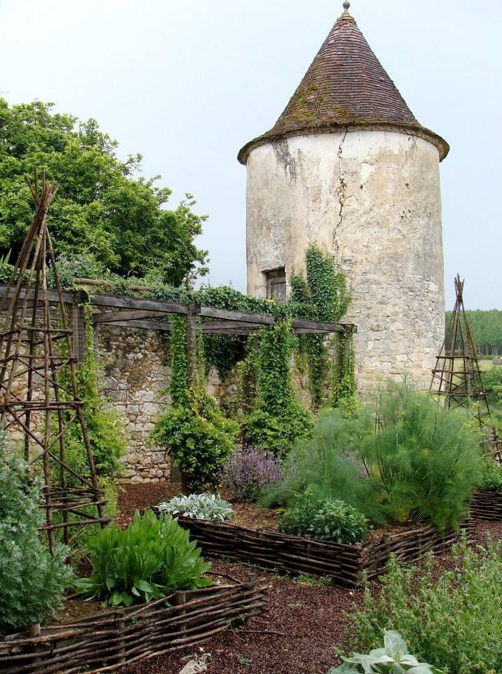The spring garden at my castle!!Seriously,why does my fennel never look that good!??