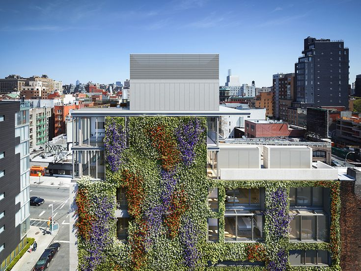 green walls in new york: a roundup of the citys growing number of vertical gardens