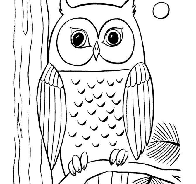 Owl Clipart Black And White Google Search Owl Coloring Pages Wise Owl With Big Eyes On A Tree Lim Owl Coloring Pages Owl Images Kids Printable Coloring Pages