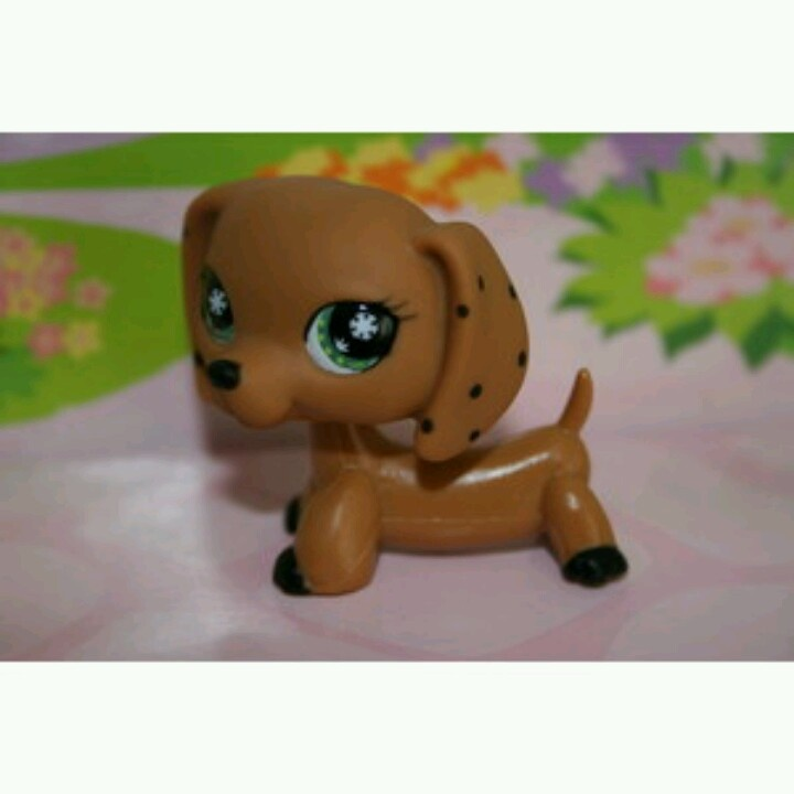 Meh dream lps dachshund beside the one I have and which I m getting. 54 best Weiner dog littlest pet shop images on Pinterest   Weiner