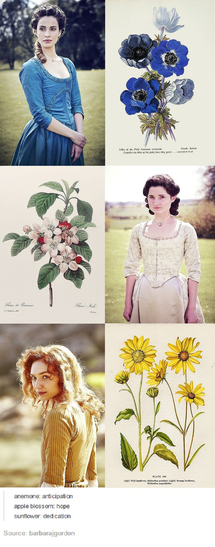 The Women of Poldark In Flowers  http://barbarajgordon.tumblr.com/