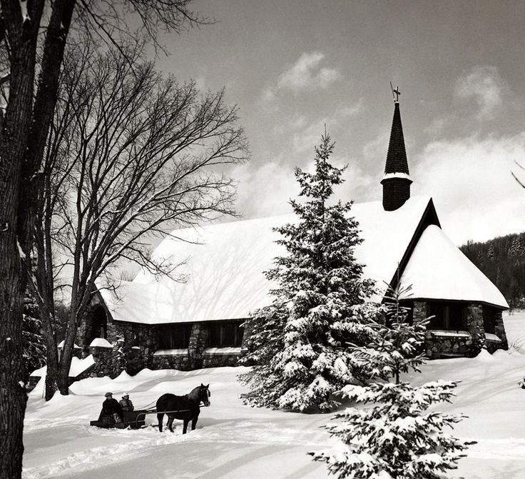 winter scene in black and white - Christmas In Black And White
