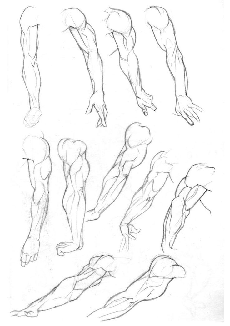 Sketchbook: Arms Pg2 by ~Bambs79 on deviantART