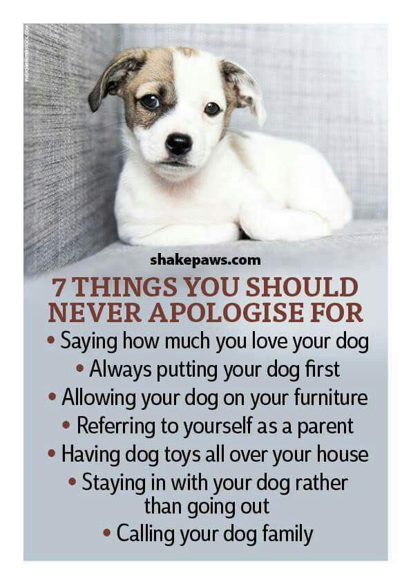 Things you should never apologize for!