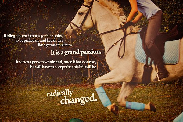 I am one of those fortunate souls who can't seem to escape the grip of this grand passion.: Equine Quotes, Hors Girls Quotes, Equestrian Quotes, Hors Thecowgirlway, Country Girls, Country Hors Quotes, Horses Jumping Quotes, Grand Passion, Best Quotes