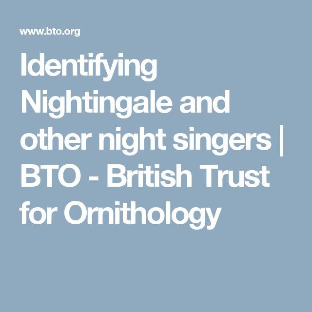Identifying Nightingale and other night singers   BTO - British Trust for Ornithology