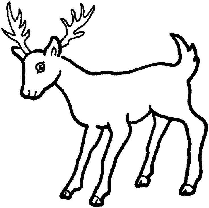 13 best Deer Coloring Pages images on Pinterest | Imprimir gratis ...