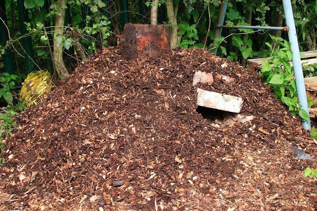 Przez Zgredek w Pumpkin Patch - Przydział i Pszczelarstwo Blog: Greenmen, Budowanie Hedgehog House & Przycinanie drzew!