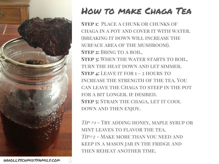 What is Chaga, what are the benefits and how to make a Chaga tea!