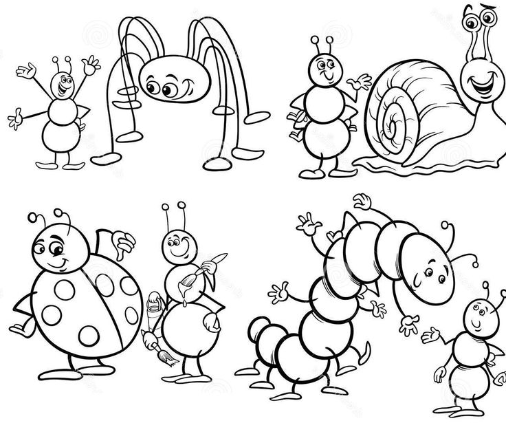 funny fly insects coloring pages - photo#24
