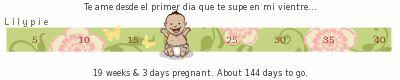 Mi calendario de embarazo