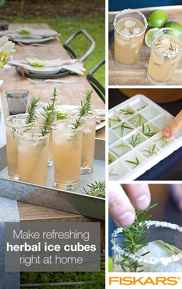 Stay cool this summer by adding fresh herbs to your ice tray! Find our tips on how to make this party pleaser, a perfect addition to your signature cocktail.