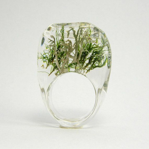terrarrium ring. @Liana Kabel, I thought of you.