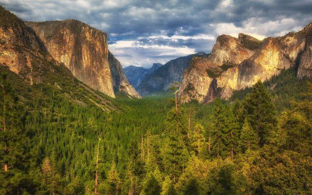 Yosemite, Zion National Park, Grand Canyon e Joshua Tree: i più bei parchi USA Lo Yosemite con le sequoie, lo Zion National Park con le formazioni rocciose, l'imponente Grand Canyon e gli alberi del Joshua Tree National Park: sono i più bei parchi nazionali degli Stati Uniti. N #usa #parchi #nazionali #natura