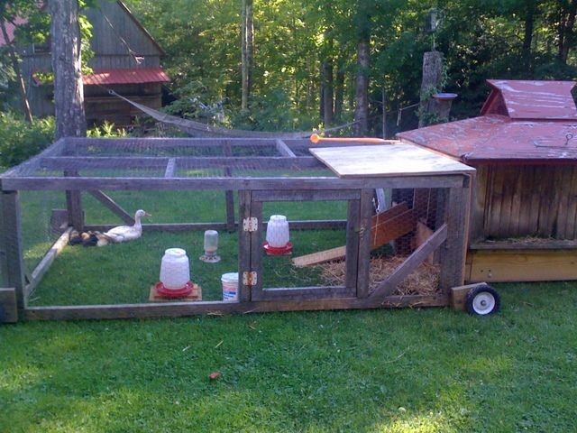 duck pens   Rolling duck pen with attached house -- an evolving system for duck ...
