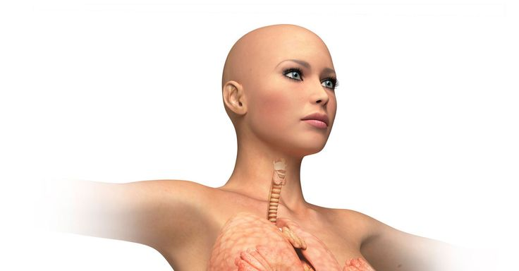 An Italian doctor says full-body transplants, where a living person's head would be attached to a donor body, could be possible in two years.