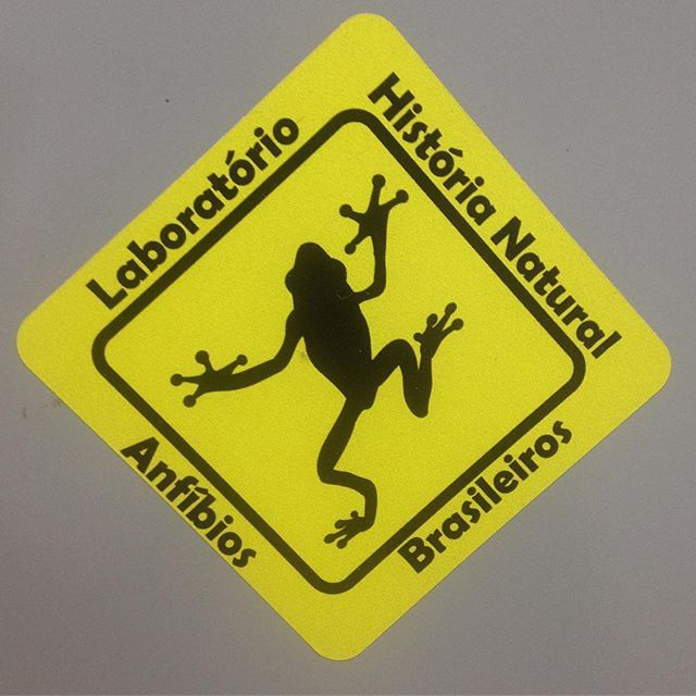 #frogs #brasil #naturalhistory #laboratory #research #science #amphibians #art #signs #university #campinas