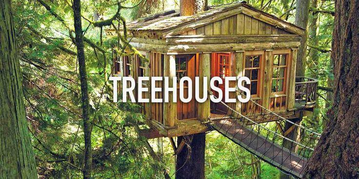 Treehouse Stays _ Stayzilla