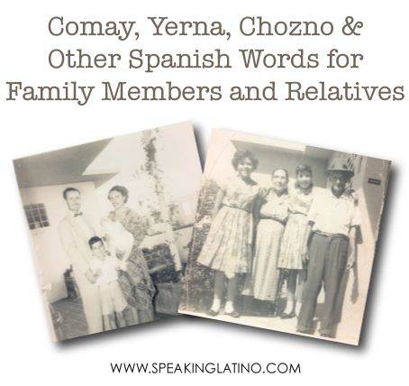Infographic: Comay, Yerna, Chozno & Other Spanish Words for Family Members