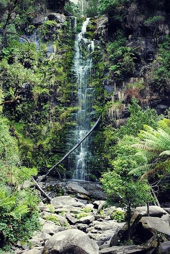Erksine Falls - Lorne Australia.