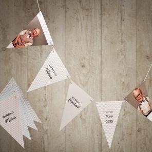 Maak je feest compleet met deze leuke vlaggenlijn! De hippe driehoekjes geven jouw foto's een extra speelse toets. Maak nu je keuze uit de 5 verschillende kleuren! De witte koord wordt standaard meegeleverd.