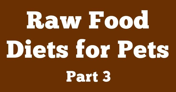 In this last segment on the myths and truths of raw food diets, Dr. Becker discusses why raw pet foods get a bad rap. http://healthypets.mercola.com/sites/healthypets/archive/2013/04/01/raw-food-diet-part-3.aspx
