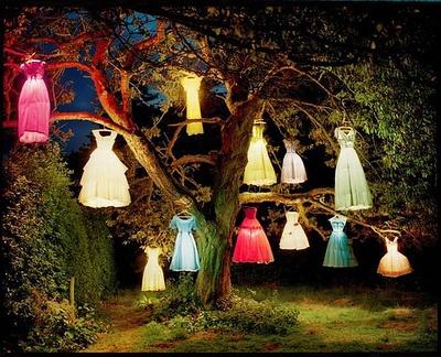 (lanterns,tim walker,elephant,dress)