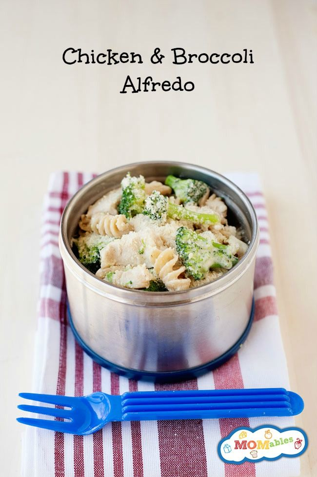 easy chicken and broccoli alfredo skilet meal turns leftovers into a healthy thermos lunch! Perfect for the office or school