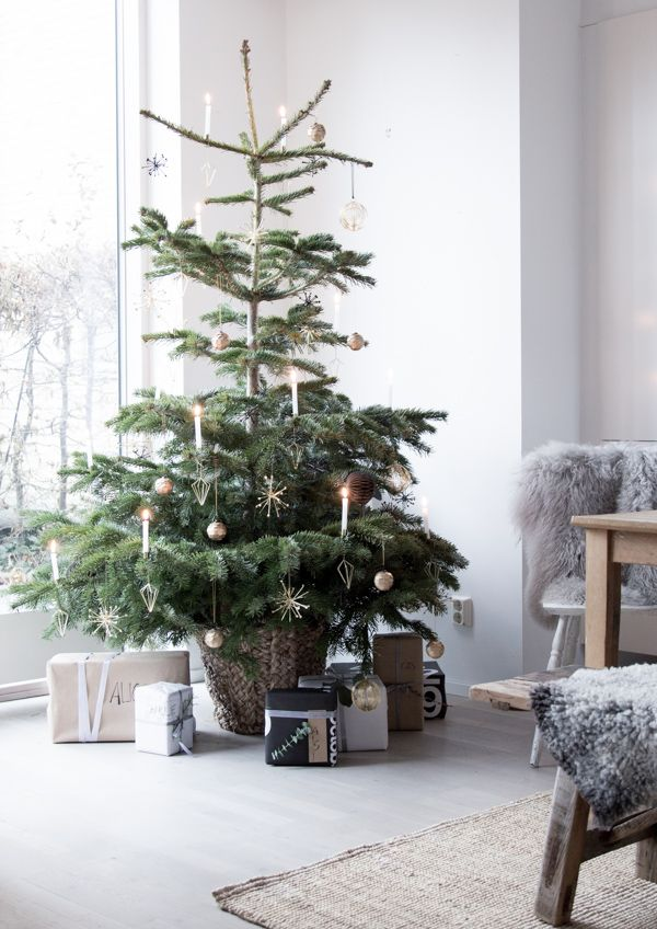 Our home at Christmas  - off grid Christmas tree with  real candles :)   Photograhy Niki / Brantmark - My Scandinavian Home  Blog (styling - Genevieve Jorn).